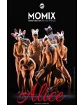 concert Momix