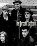 NARCOTIC DAFFODILLS