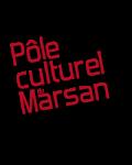 POLE CULTUREL DU MARSAN A SAINT PIERRE DU MONT