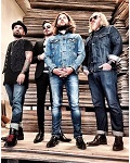 concert Rival Sons