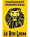 concert Le Roi Lion