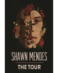 concert Shawn Mendes
