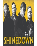 concert Shinedown