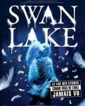 concert Swan Lake