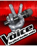 TELE CROCHET / On connait les 8 finalistes qui participeront à la tournée The Voice Tour