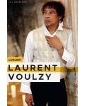 concert Laurent Voulzy