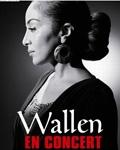 concert Wallen
