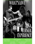 WHAT'S LOVE - TINA TURNER EXPERIENCE