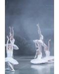 concert Le Lac Des Cygnes (yacobson Ballet)