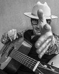 concert Elvis Costello