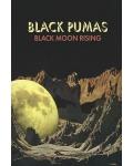 Nouvelle sensation soul, Black Pumas sera en concert à l'Olympia en novembre 2020
