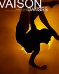 VAISONS DANSES 2014