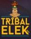 TRIBAL ELEK FESTIVAL