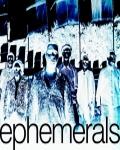 concert Ephemerals