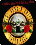 concert Guns N Roses Experience
