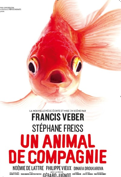 UN ANIMAL DE COMPAGNIE