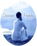 concert Daisies Fields