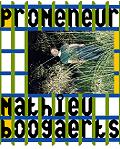 concert Mathieu Boogaerts