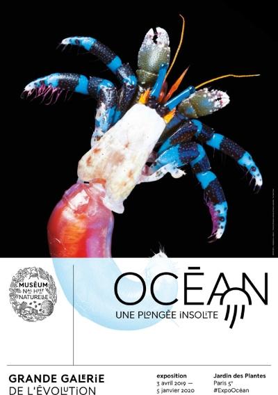 OCEAN, UNE PLONGEE INSOLITE