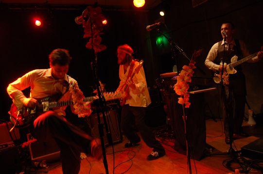 concert L'orchidee D'hawai
