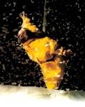spectacle Slava's Snowshow de Slava's Snowshow