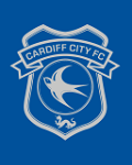Visuel CARDIFF CITY STADIUM