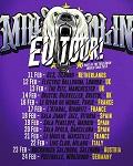 concert Millencolin