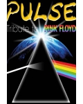 concert Pulse (tribute To Pink Floyd)