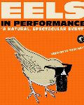 Eels en concert à Toulouse... et à Paris en 2014 !