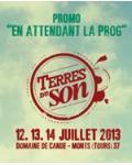 Terres du Son festival 2013 : teaser début de prog' !