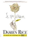concert Damien Rice